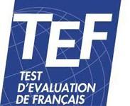 TEF(TEFAQ)1